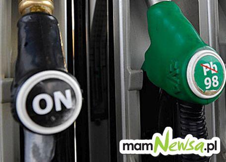 Poseł PiS interweniował w sprawie wysokich cen paliw na niektórych stacjach i....