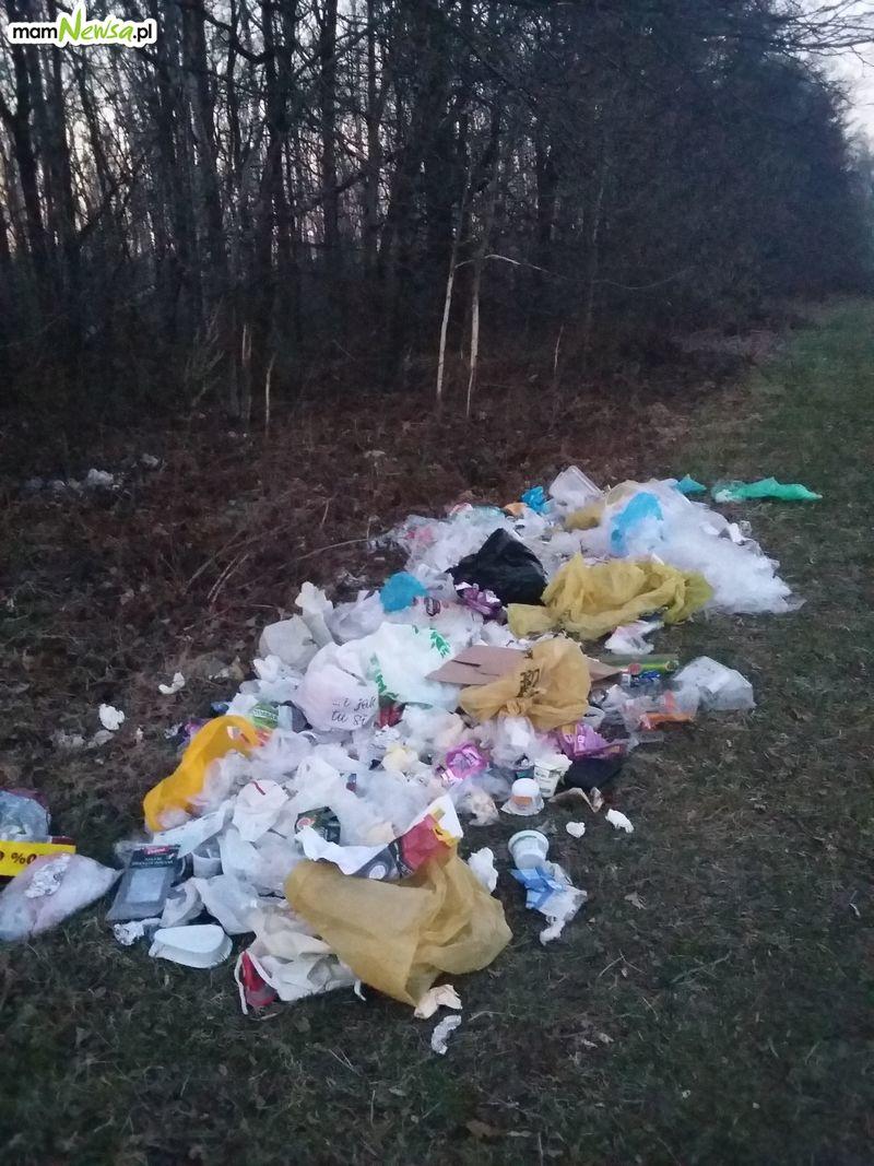 Nie do wiary. Ktoś zrobił wysypisko śmieci pod lasem [AKTUALIZACJA]
