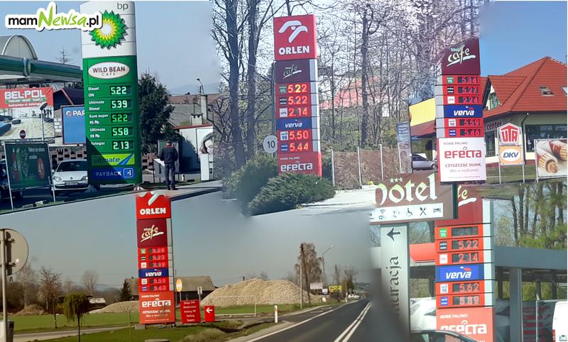 Ceny paliw w górę! W piątek najdrożej było w.... [FOTO]