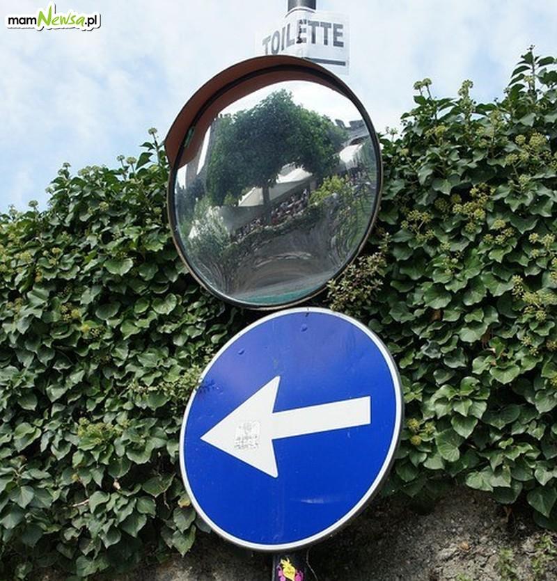 Lustro na skrzyżowaniu, zarośnięte lampy czy nowy przystanek. Oto walczą radni