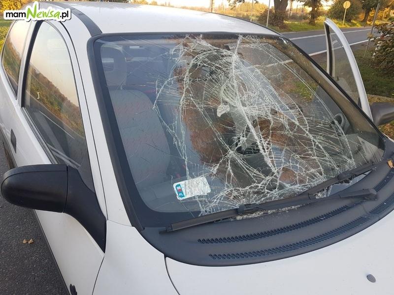 Wypadek z udziałem nietrzeźwego rowerzysty