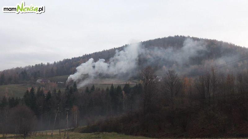 Straż Miejska z Andrychowa ruszyła z kontrolami. Pierwsze mandaty już wystawione