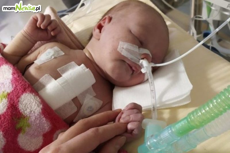 Jedynym ratunkiem dla Milenki z Osieka jest kosztowna operacja. Każdy może pomóc