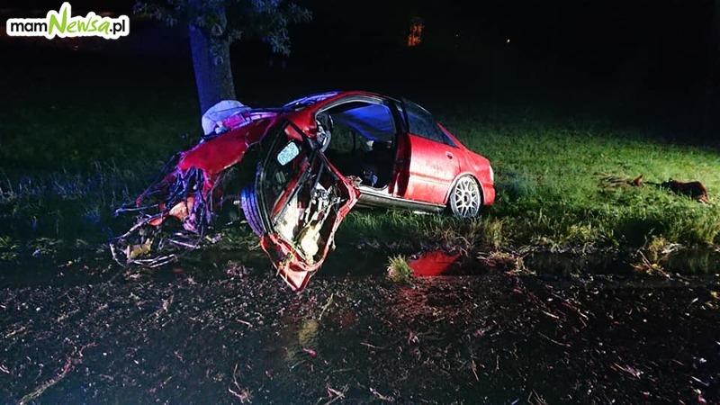 Auto roztrzaskane na drzewie