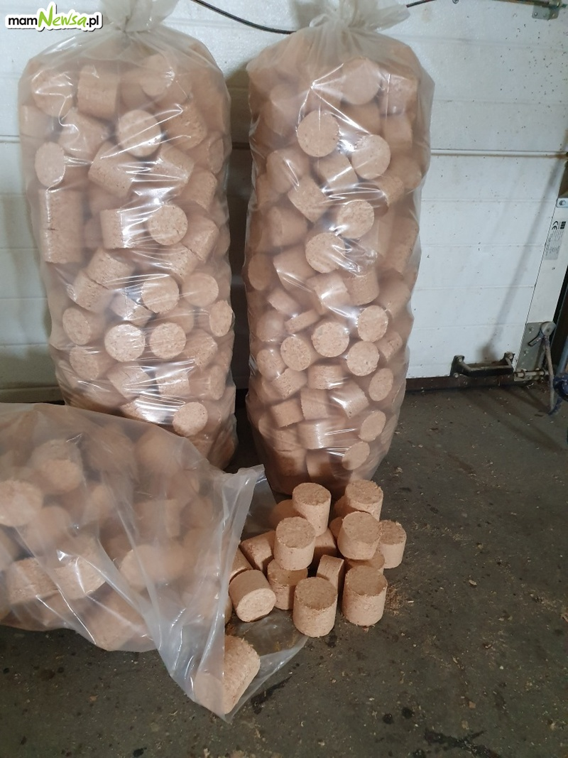 W sprzedaży brykiet z drewna iglastego. Andrychów i okolice