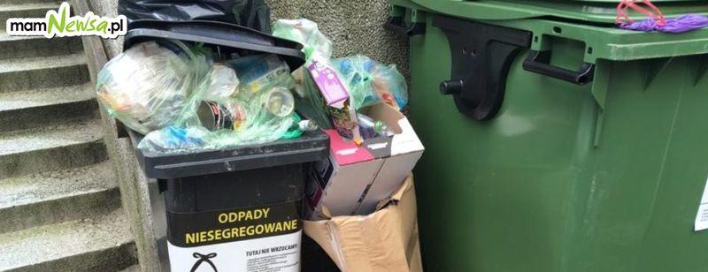 Opłata za wywóz śmieci w górę o 5,5 zł od osoby miesięcznie