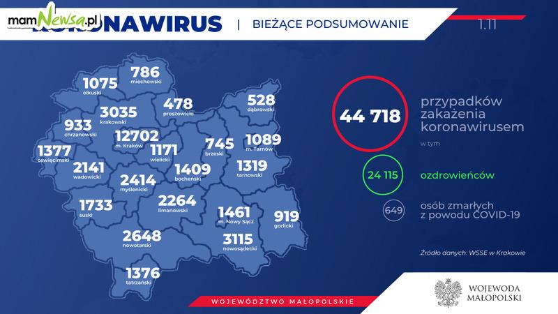 Koronawirus - aktualna sytuacja w regionie. Raport sanepidu z 1 listopada [AKTUALIZACJA]