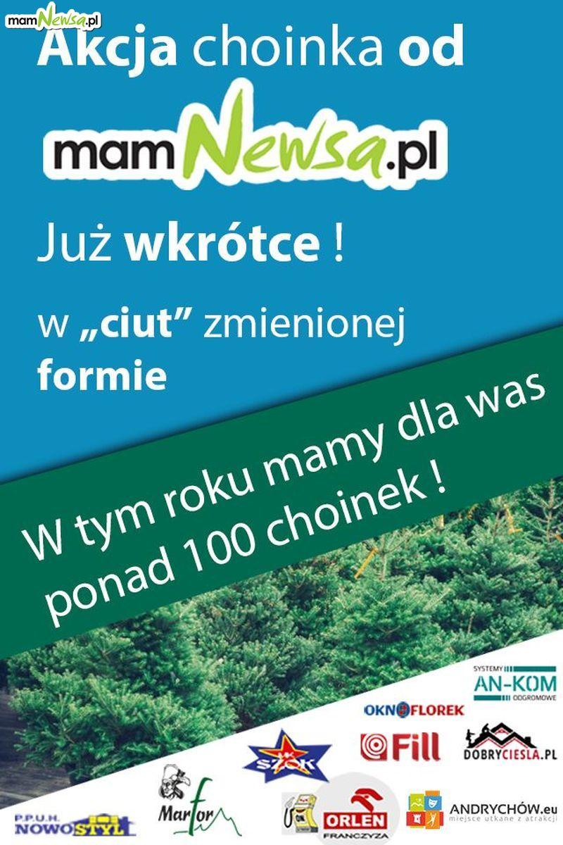 W grudniu jak zwykle choinki na święta od mamNewsa.pl
