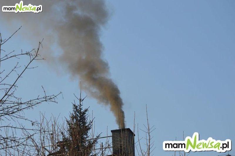 Chcą wprowadzić całkowity zakaz palenia węglem. Wiadomo kiedy