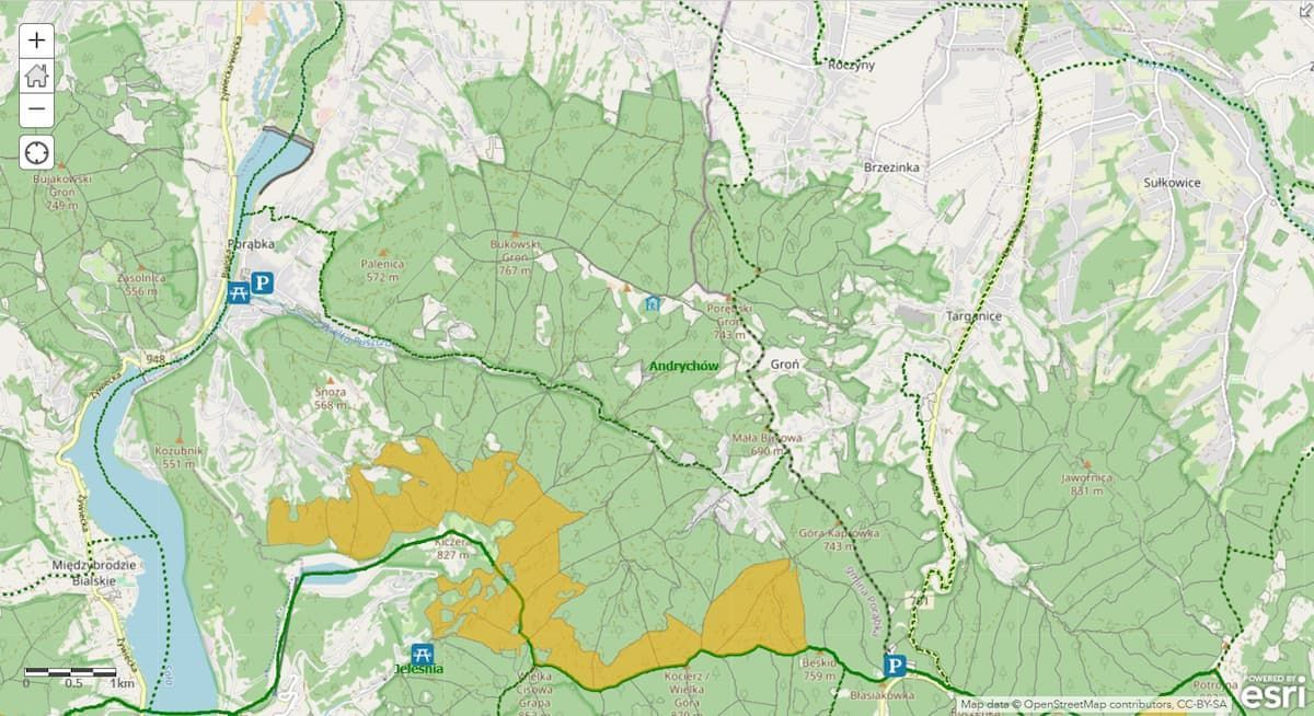 Zanocuj w lesie - te tereny zostały wyznaczone na biwak