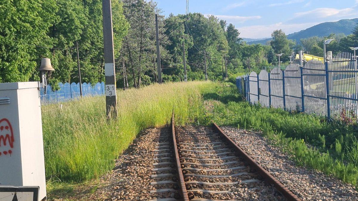 Tory powoli zarastają, kiedy wrócą pociągi?