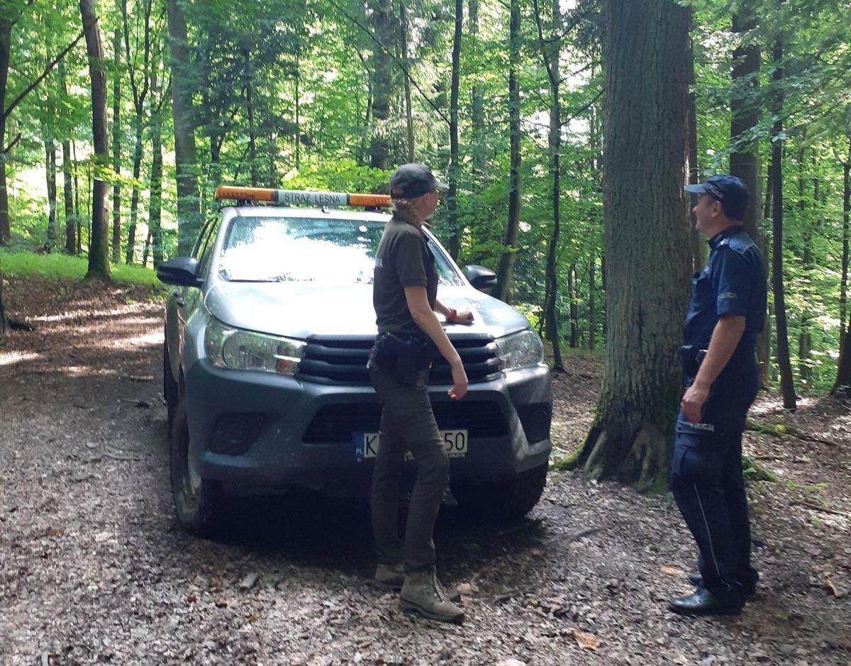 Kolejna akcja straży leśnej i policji w lasach