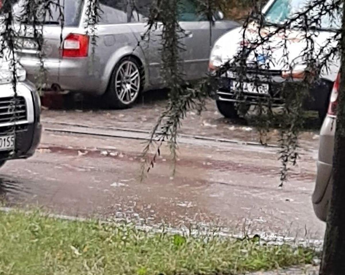 Po burzy: powalone drzewa i rzeka na ulicy [FOTO]