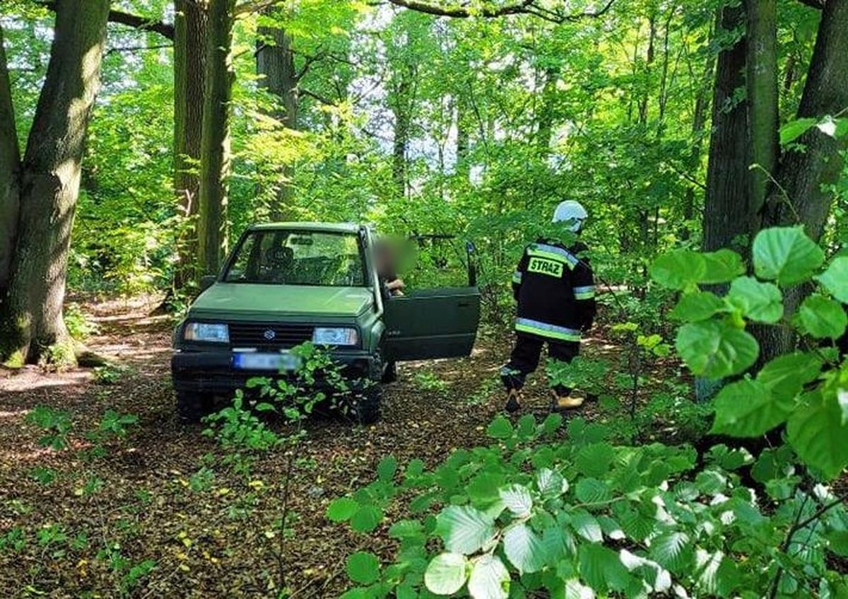 Interwencja służb ratowniczych w lesie. Strażacy chwalą postawę zgłaszających