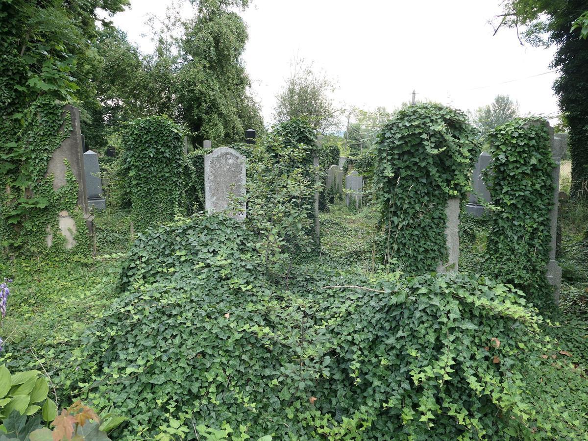Zaniedbany cmentarz w Andrychowie straszy. Kto za to odpowiada?