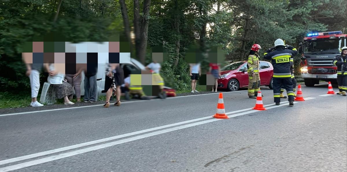 Z niewiadomych przyczyn kierowca zjechał z jezdni i uderzył w drzewo