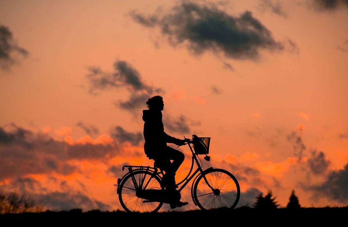 Obrodziło pijanymi rowerzystami