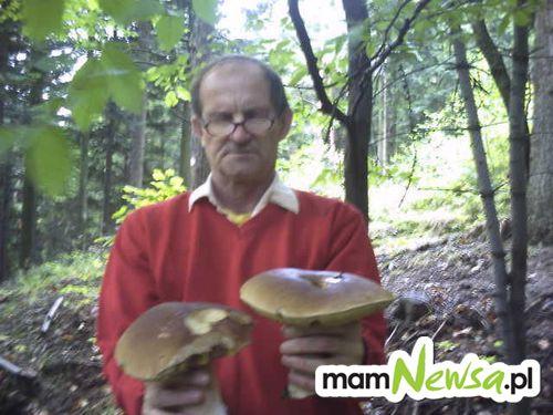 Poczet wielkich grzybów [FOTO, aktualizacja]