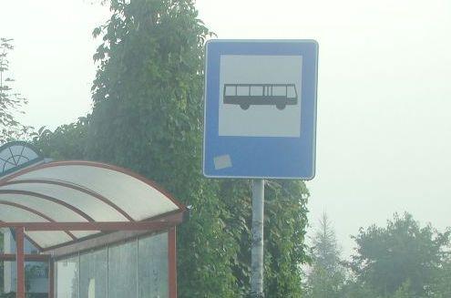 Policzą pasażerów, kupią 12 nowych autobusów?