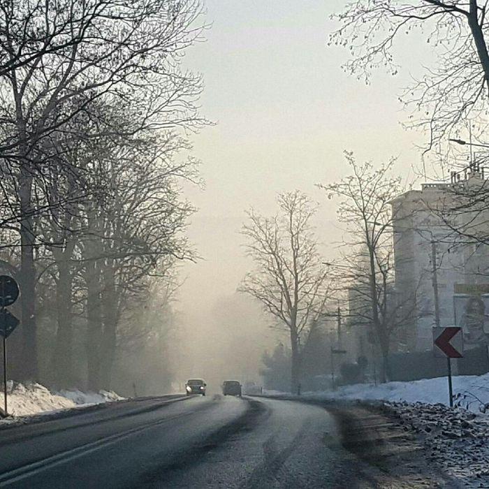 Jak walczyć ze smogiem [SONDA]
