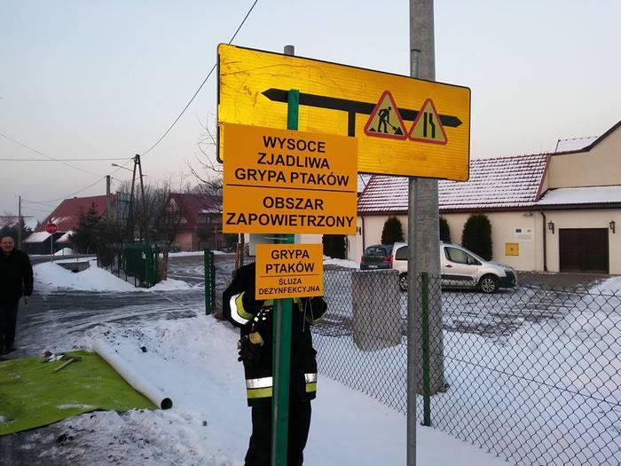Ptasia grypa już na granicy powiatu