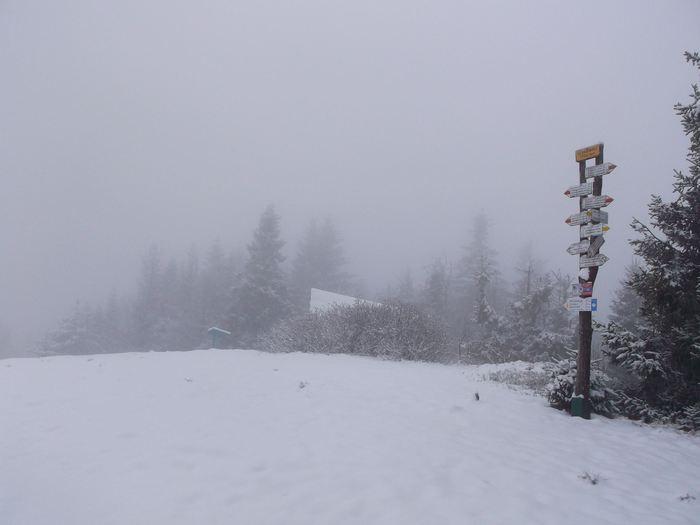 Chwilowy powrót zimy