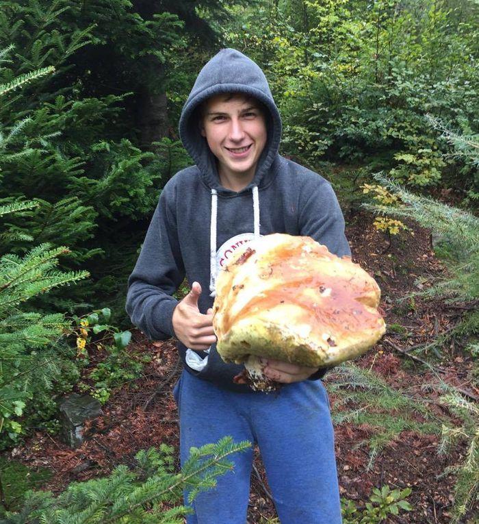 Gigantyczny prawdziwek ważył 1,1 kg!