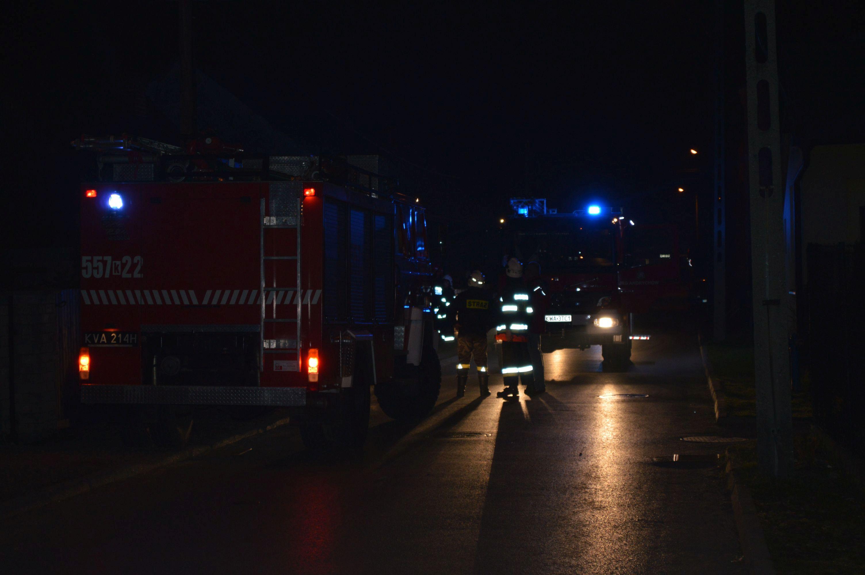 Strażacy w akcji: nad ranem spłonęły dwa samochody, wiatr uszkodził dwa domy i łamał drzewa