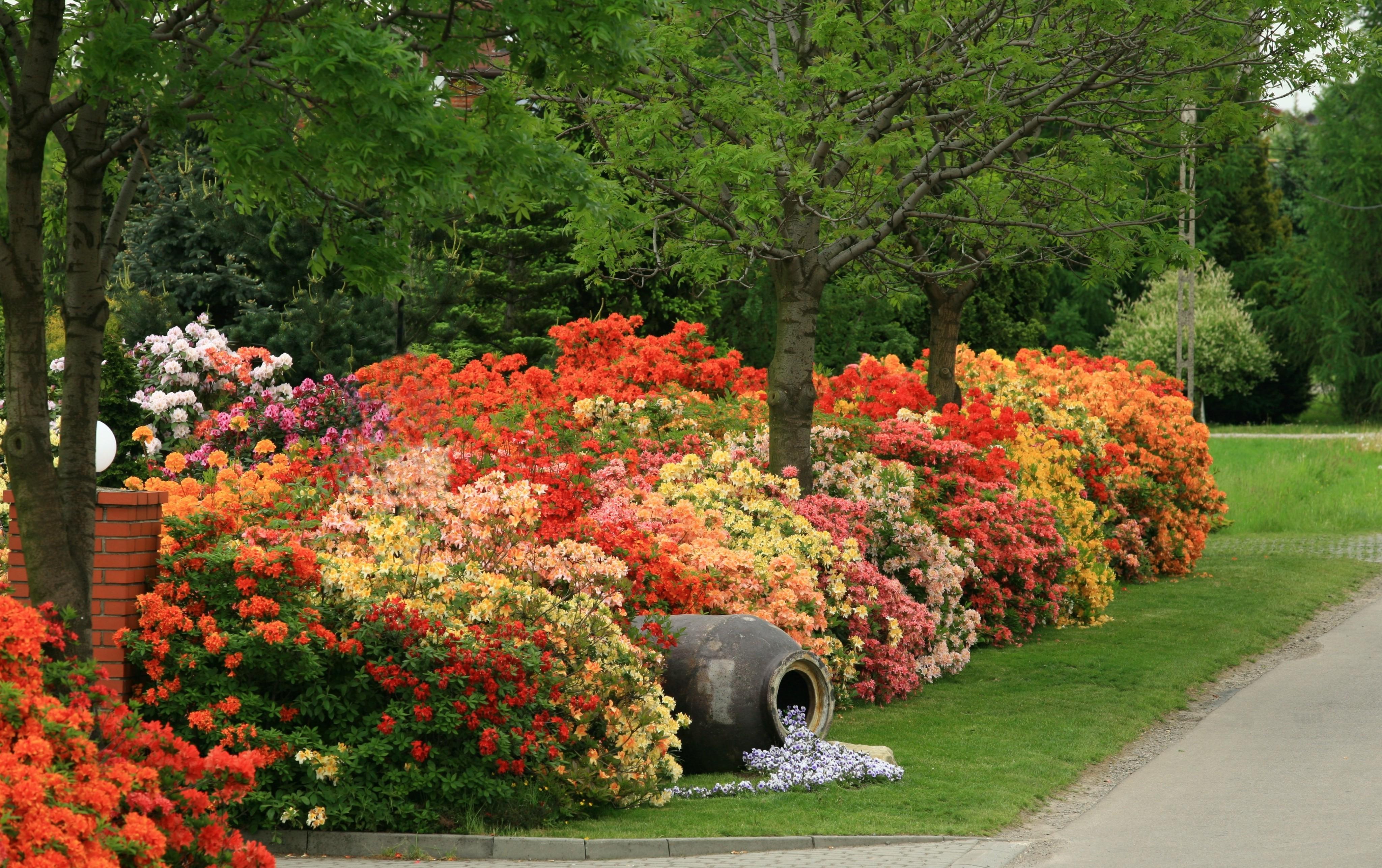 Wiosna za pasem. Jakie prace ogrodowe najlepiej wykonać w nadchodzącym okresie?