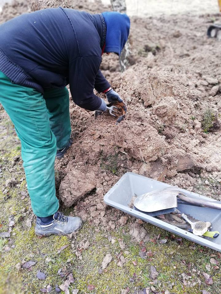 Ekshumacja szczątków żołnierzy Wehrmachtu