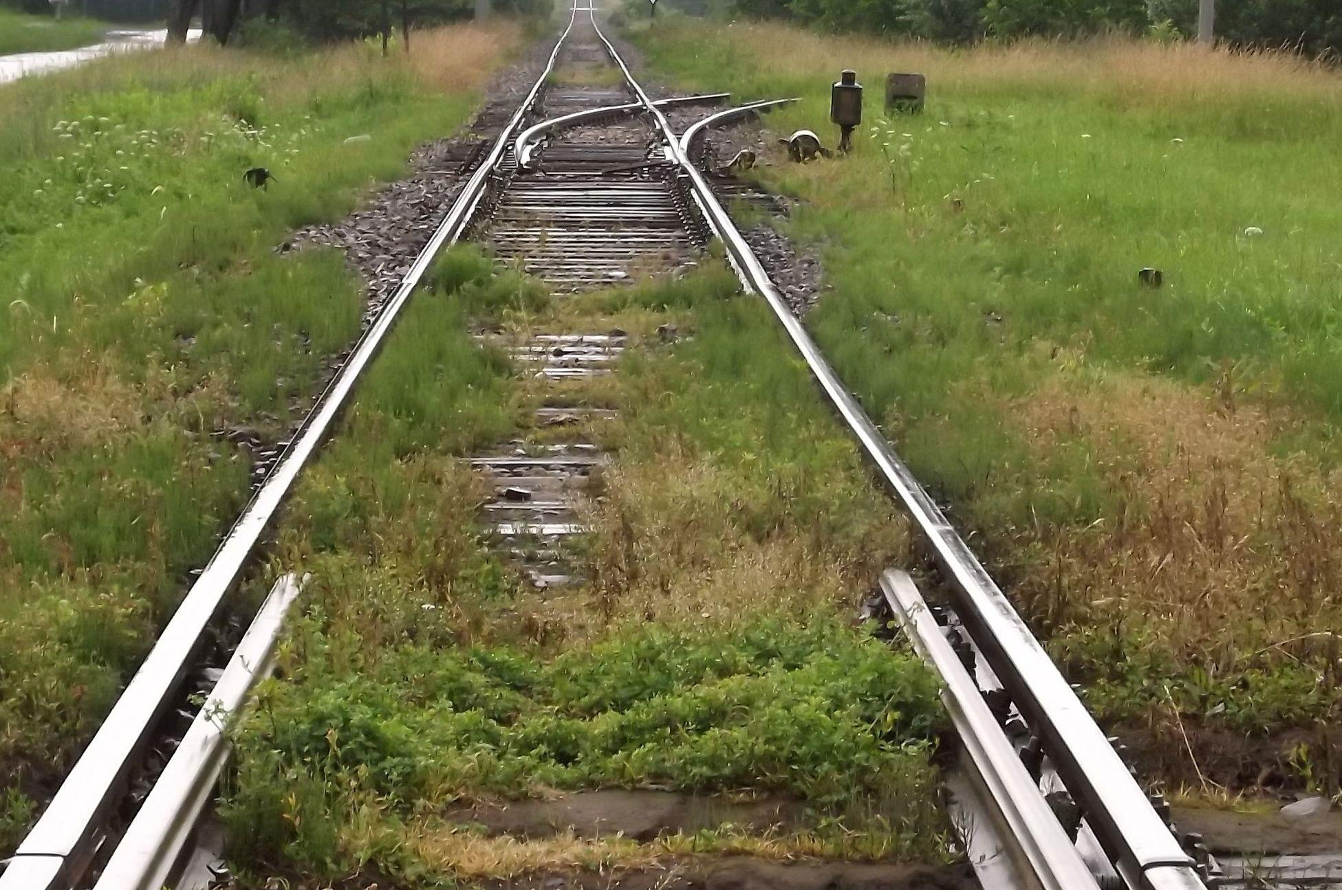 Wstrzymany ruch na torach. To wszystko przez pociągi towarowe?