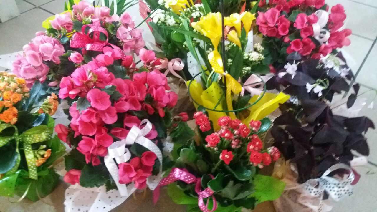 Kwiaciarnia Zielona Wstążeczka w Bulowicach na Dzień Mamy