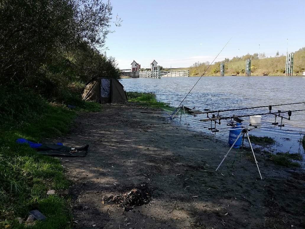 Nad brzegiem kanału znaleziono zwłoki wędkarza i jego psa