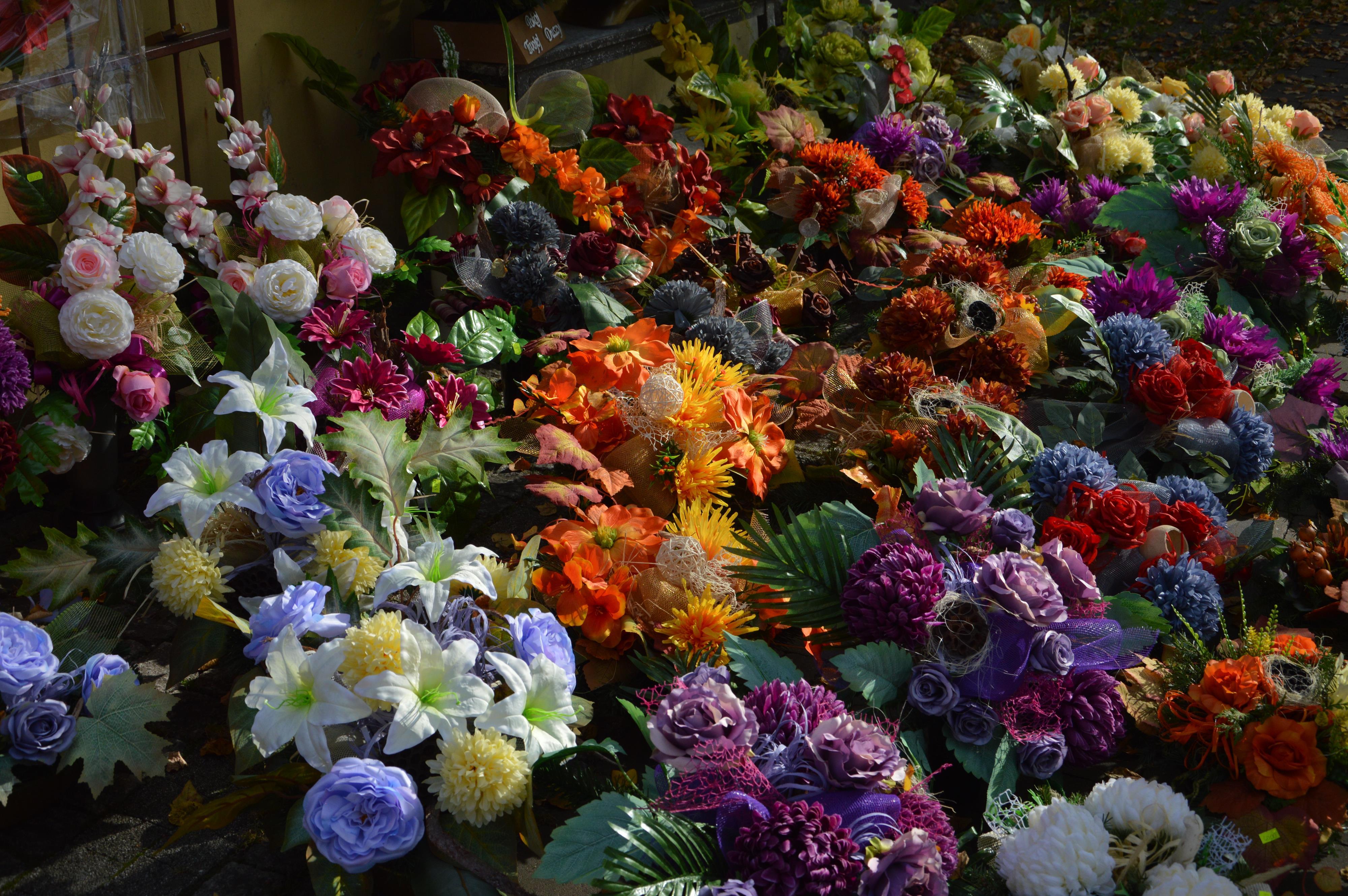 Kwiaciarnia w Pałacu Bobrowskich zaprasza