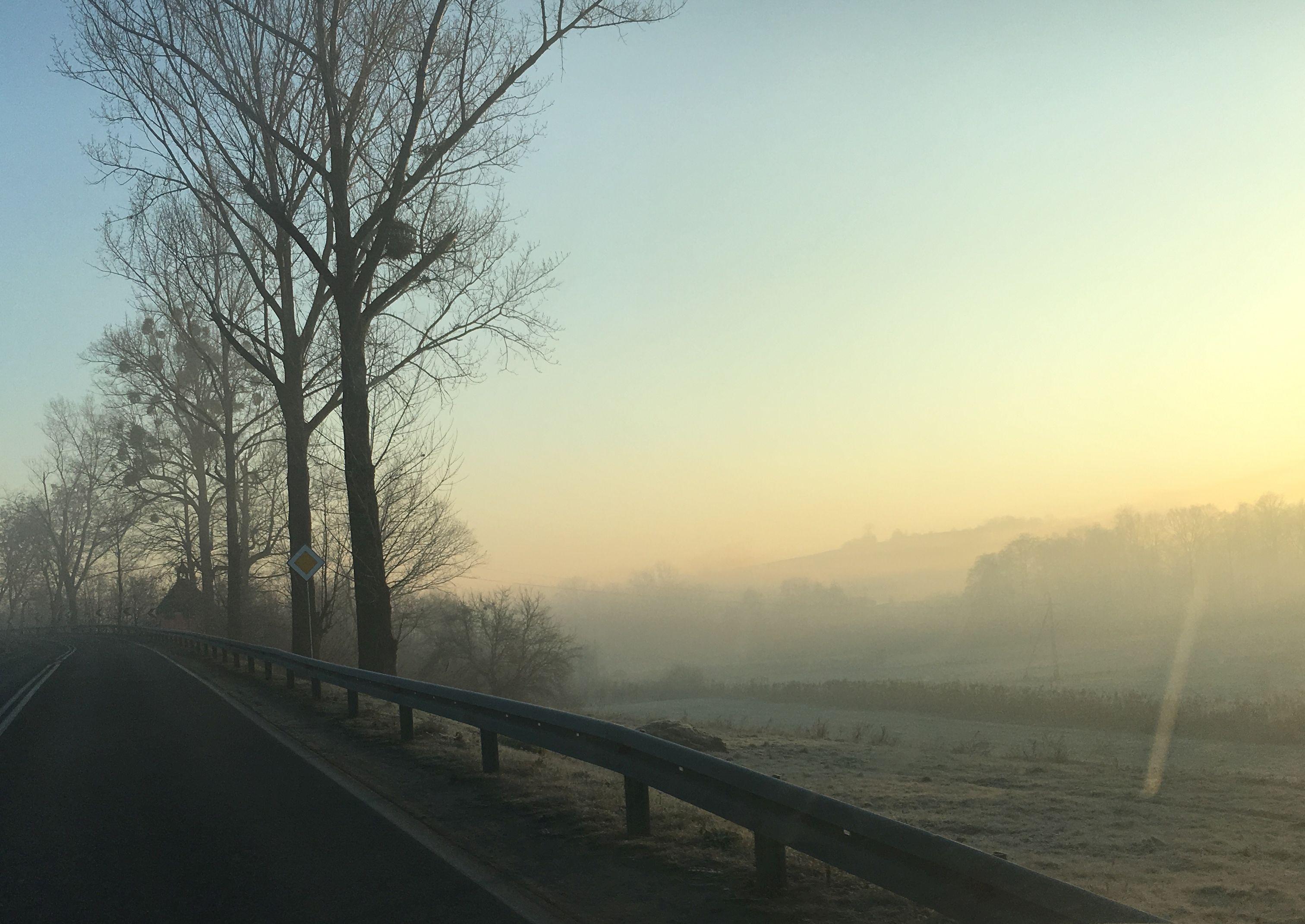 Zdjęcie Dnia. Smog coraz bardziej dokucza