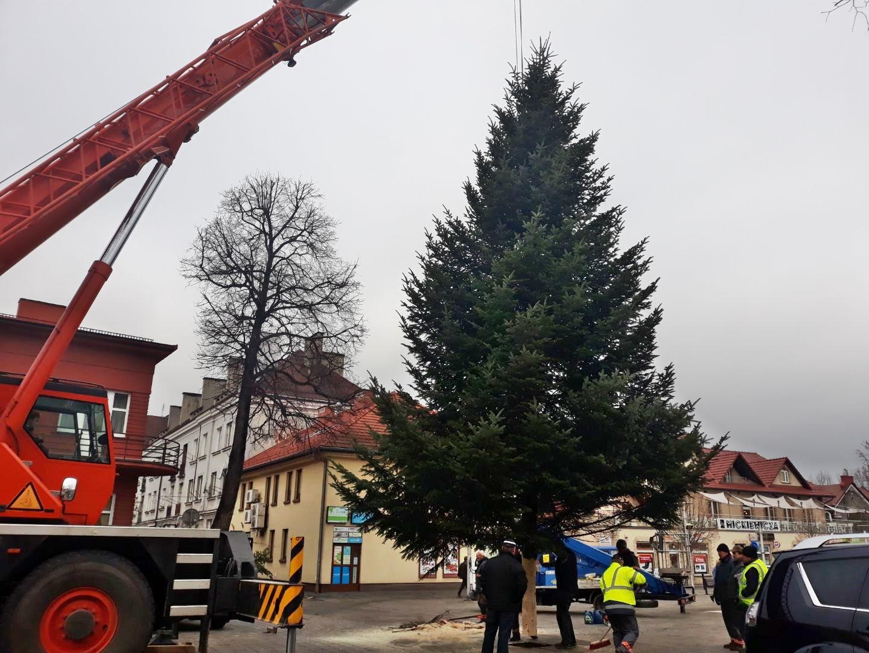 Andrychów już świąteczny. Na placu Mickiewicza stanęła choinka [FOTO]