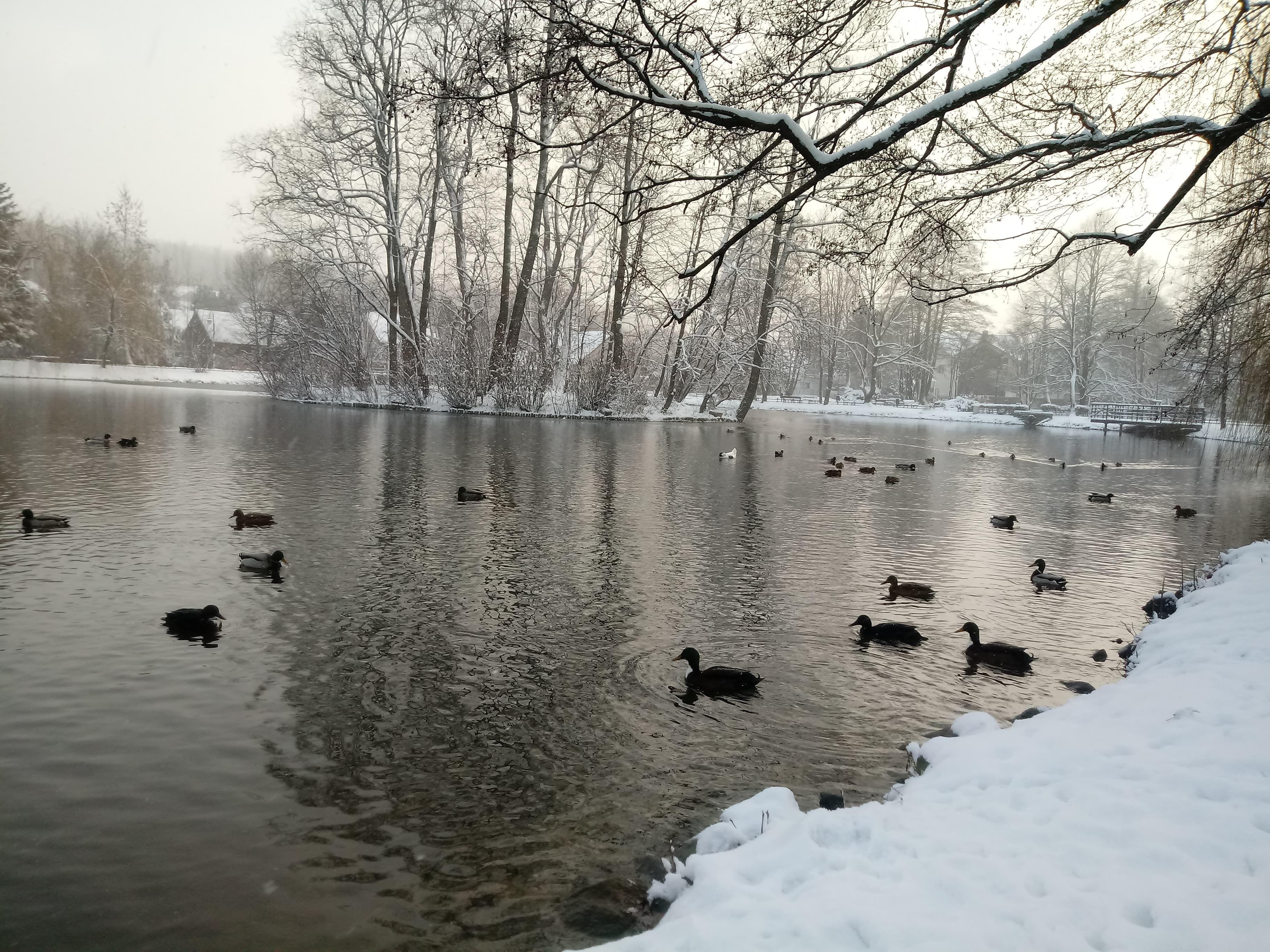 Zima zagości na dłużej [FOTO]