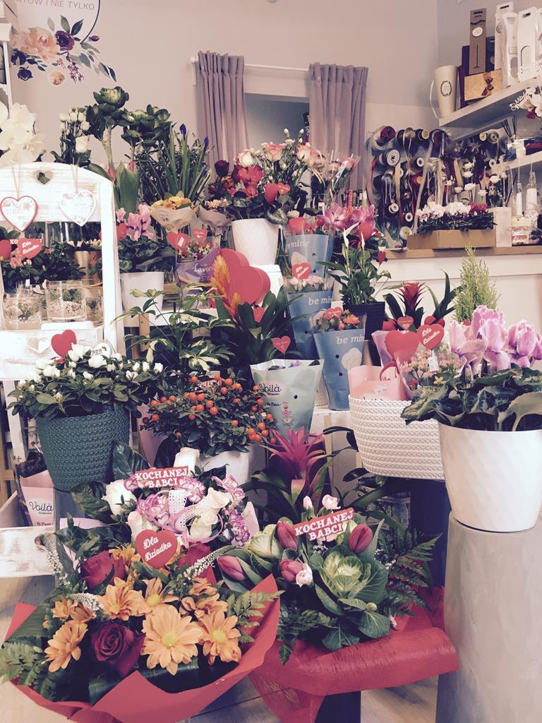 Kwiaciarnia KWIATOSFERA w Andrychowie na Dzień Babci i Dzień Dziadka