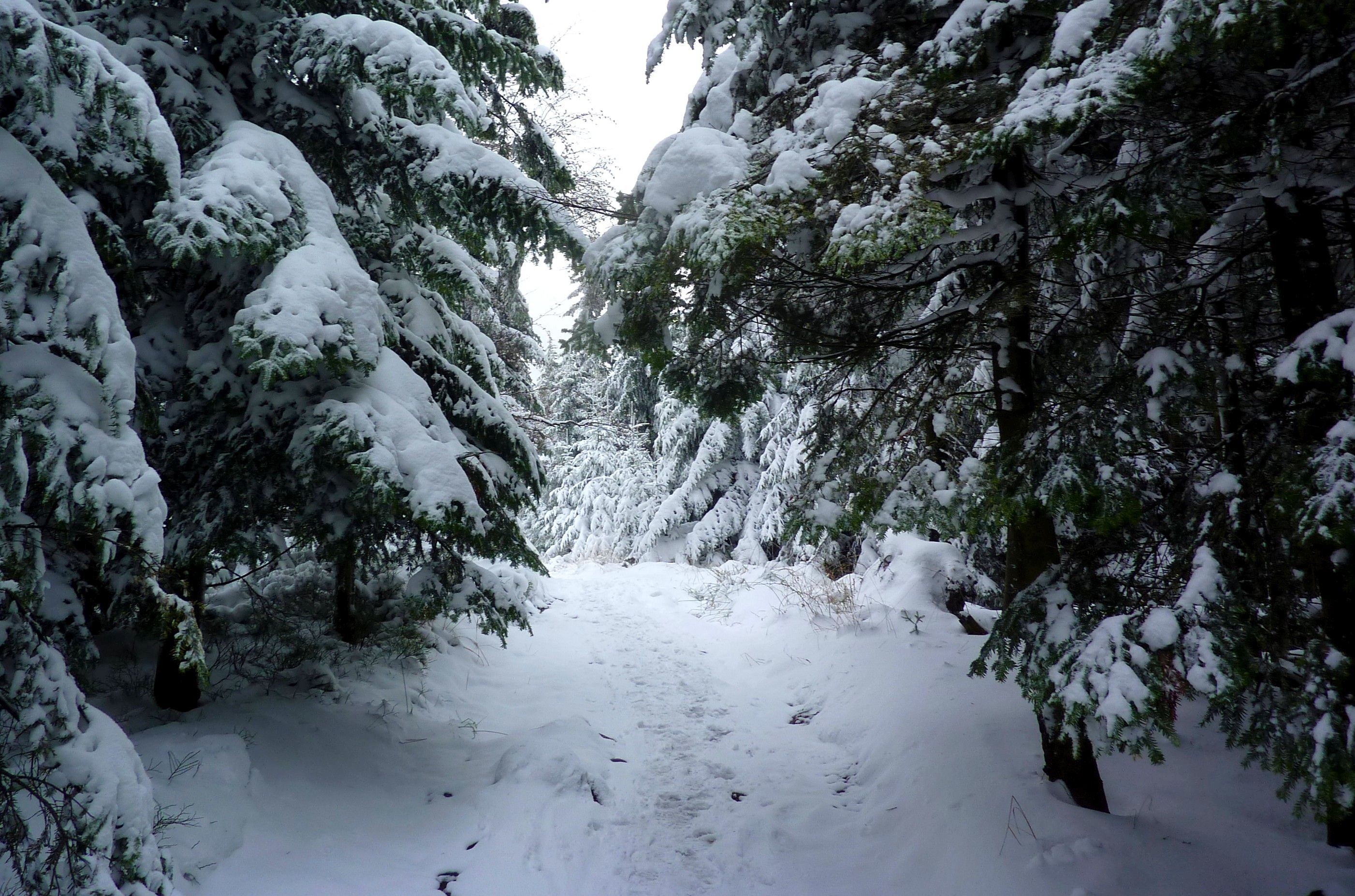 Akcja ratownicza GOPR na Przełęczy Kocierskiej. Turystka uratowana