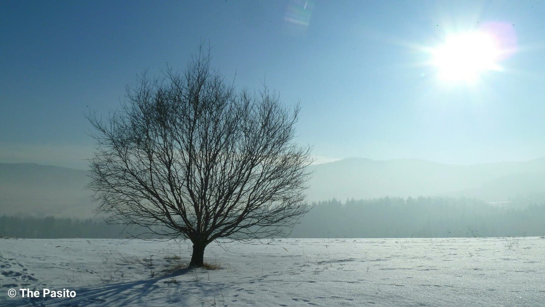 Piękny, mroźny dzień w górach [FOTO]