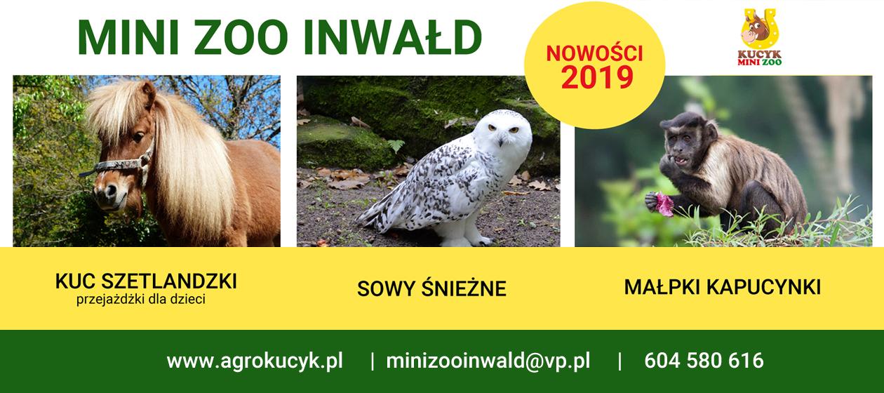 Mini Zoo - rozpoczęcie sezonu. NOWOŚCI 2019