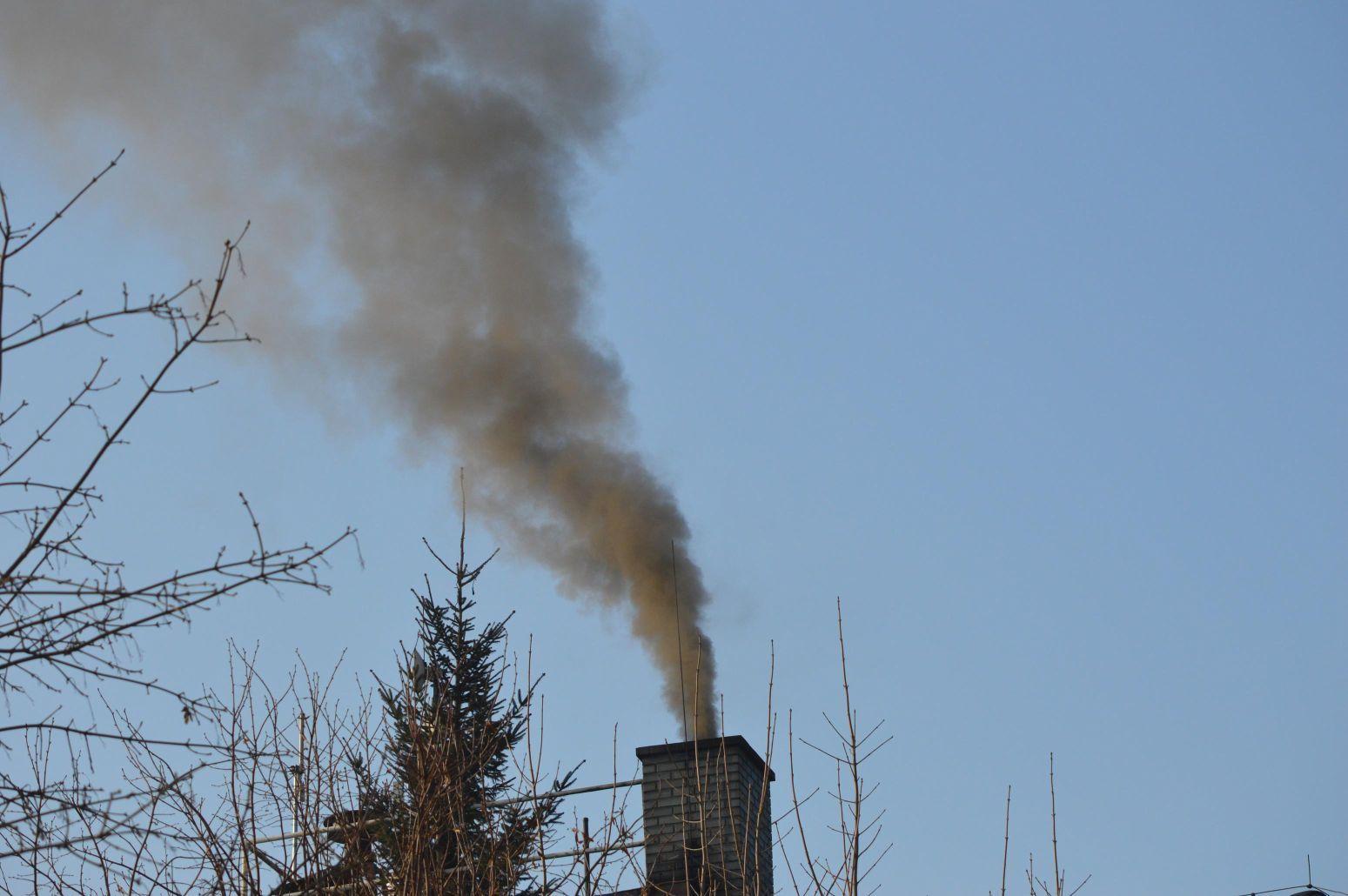 W ciągu 2 tygodni prawie 100 zgłoszeń o osobach, które zanieczyszczają środowisko