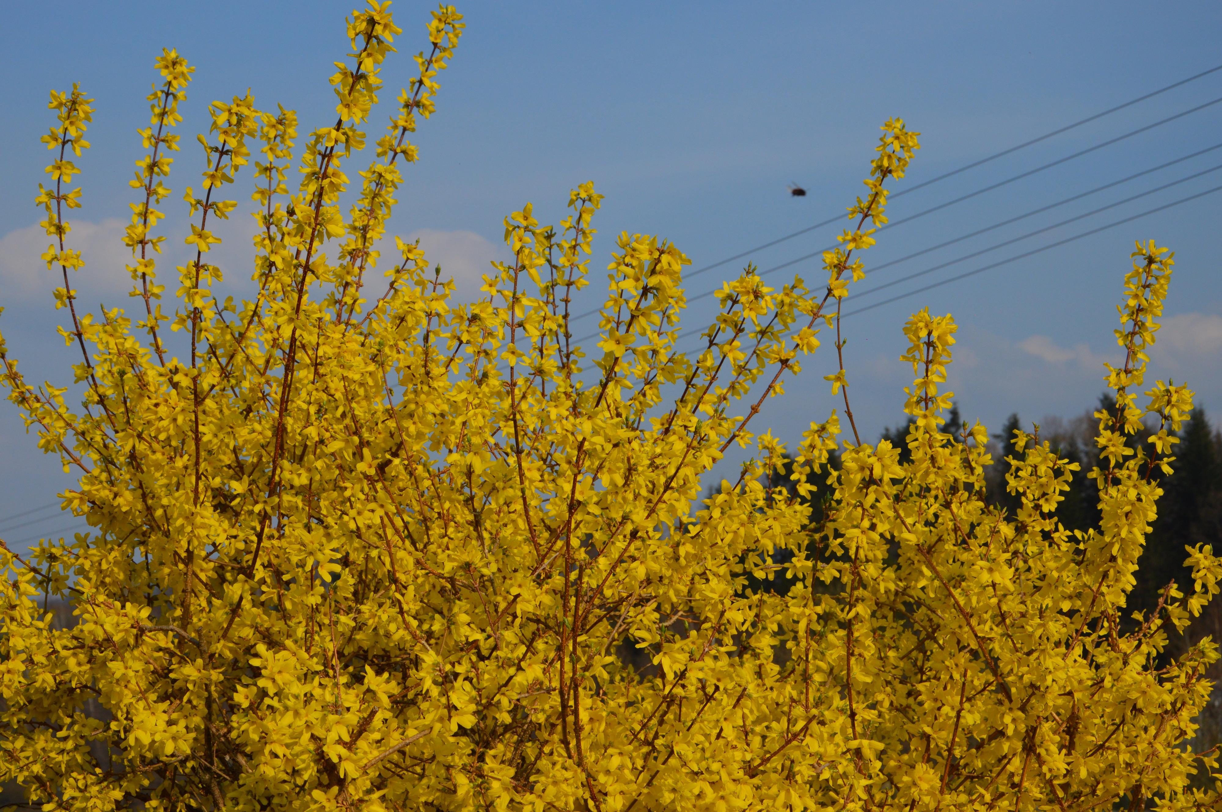 Wiosna! Tak wygląda w naszym regionie [FOTO] [AKTUALIZACJA]
