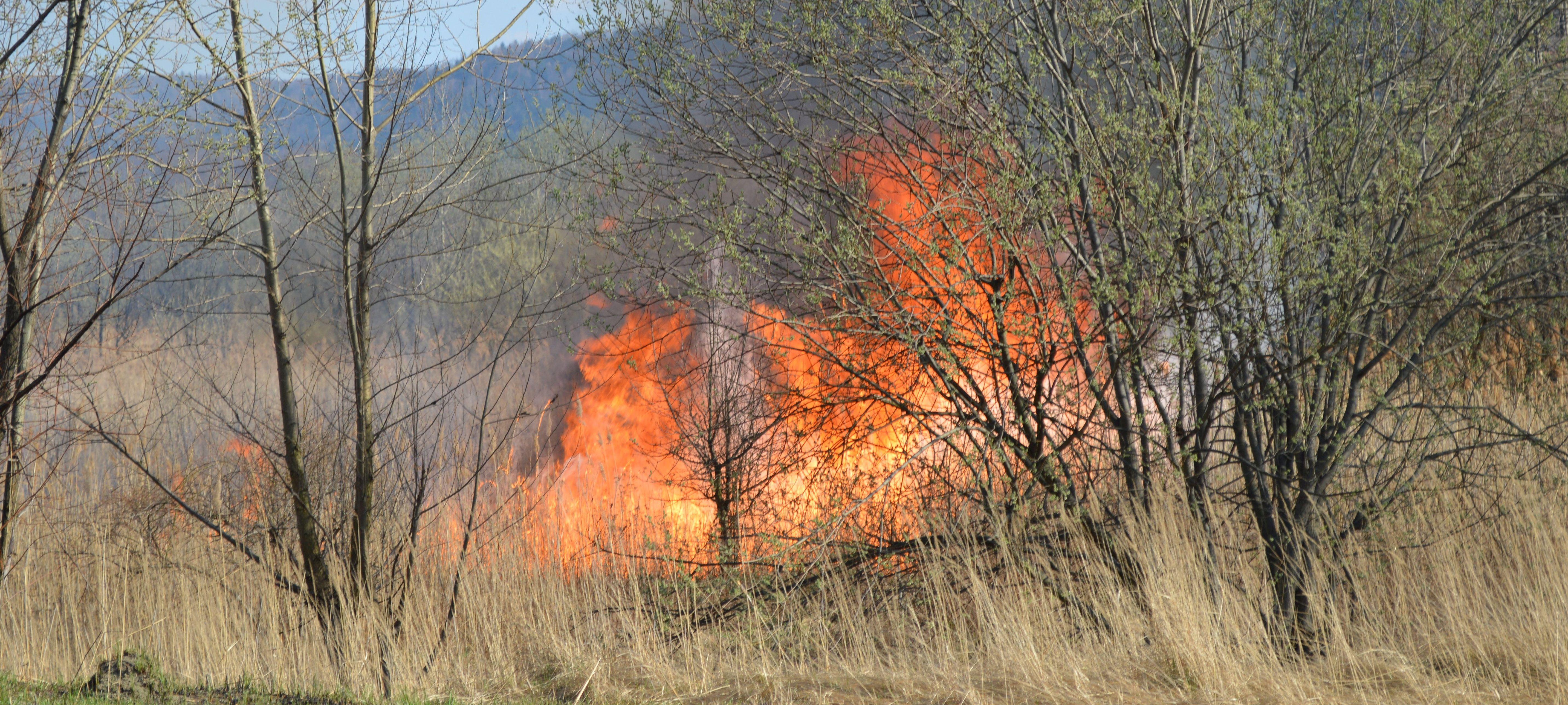 Olbrzymi pożar na Podlesiu
