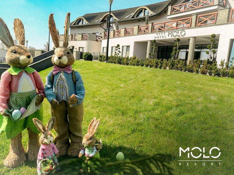 MOLO Resort. Życzenia świąteczne i zaproszenie