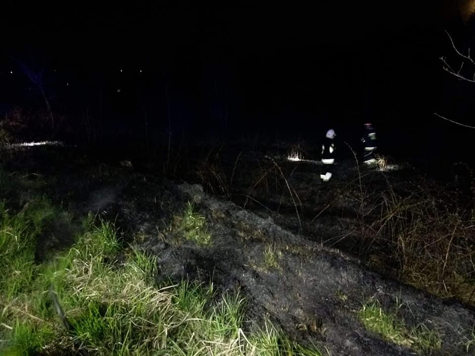 Pożar lasu w Wielką Sobotę