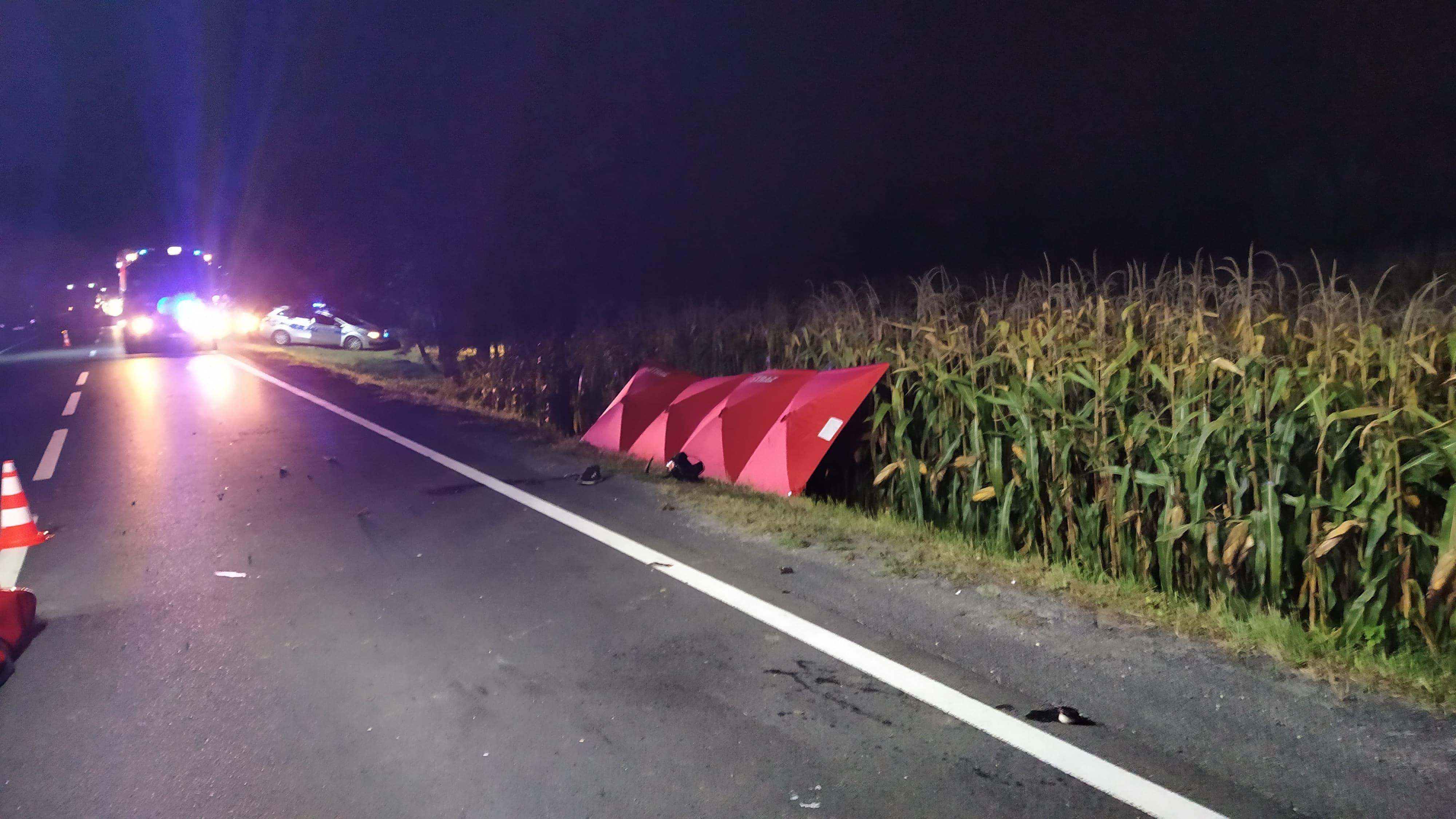 Śmiertelny wypadek na drodze krajowej między Wadowicami a Zatorem [FOTO] [AKTUALIZACJA]