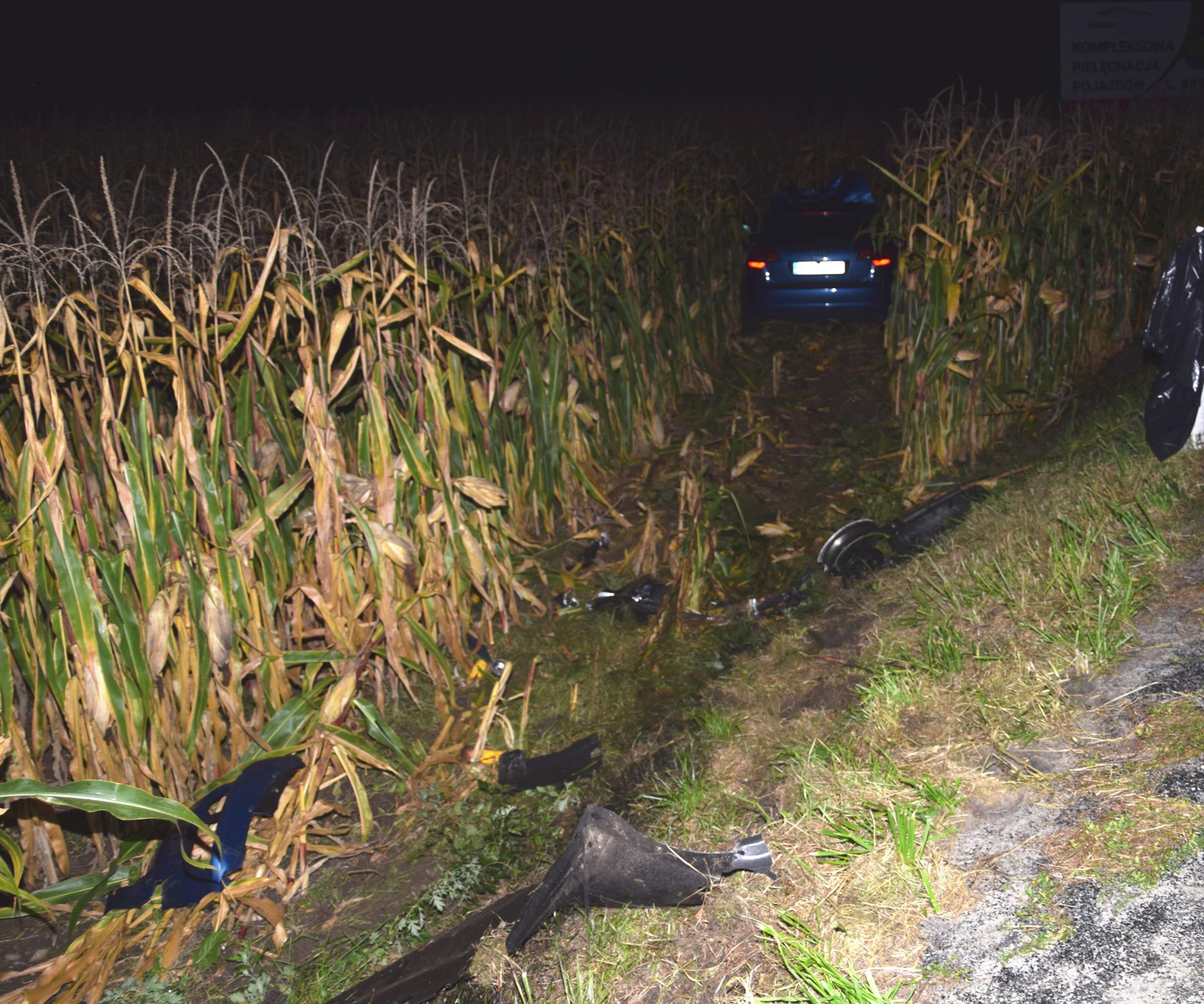 Policja poszukuje świadka tragicznego wypadku, w którym zginął 16-latek