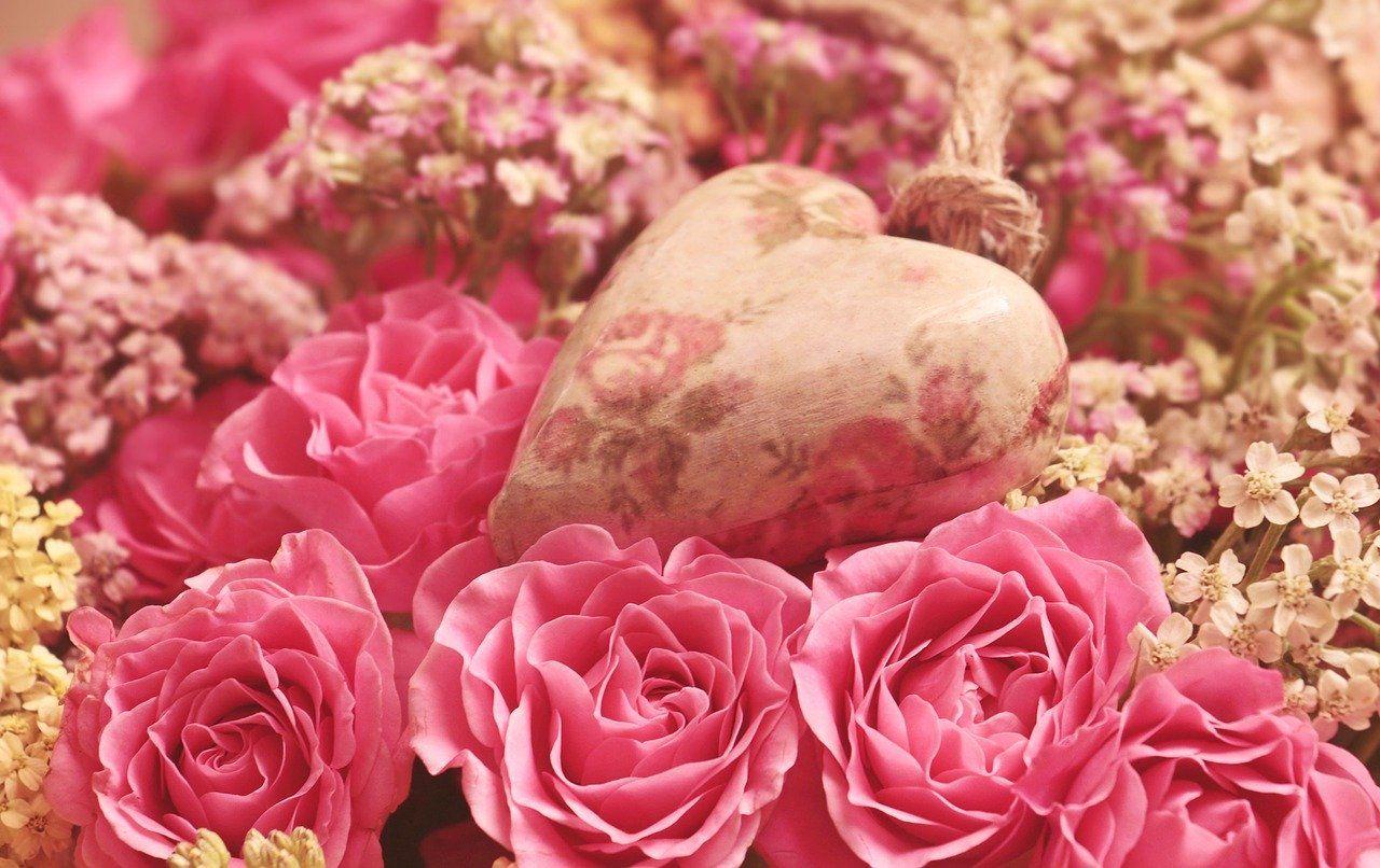 Co Oprocz Roz Wybieramy Kwiaty Na Walentynki Mamnewsa Pl