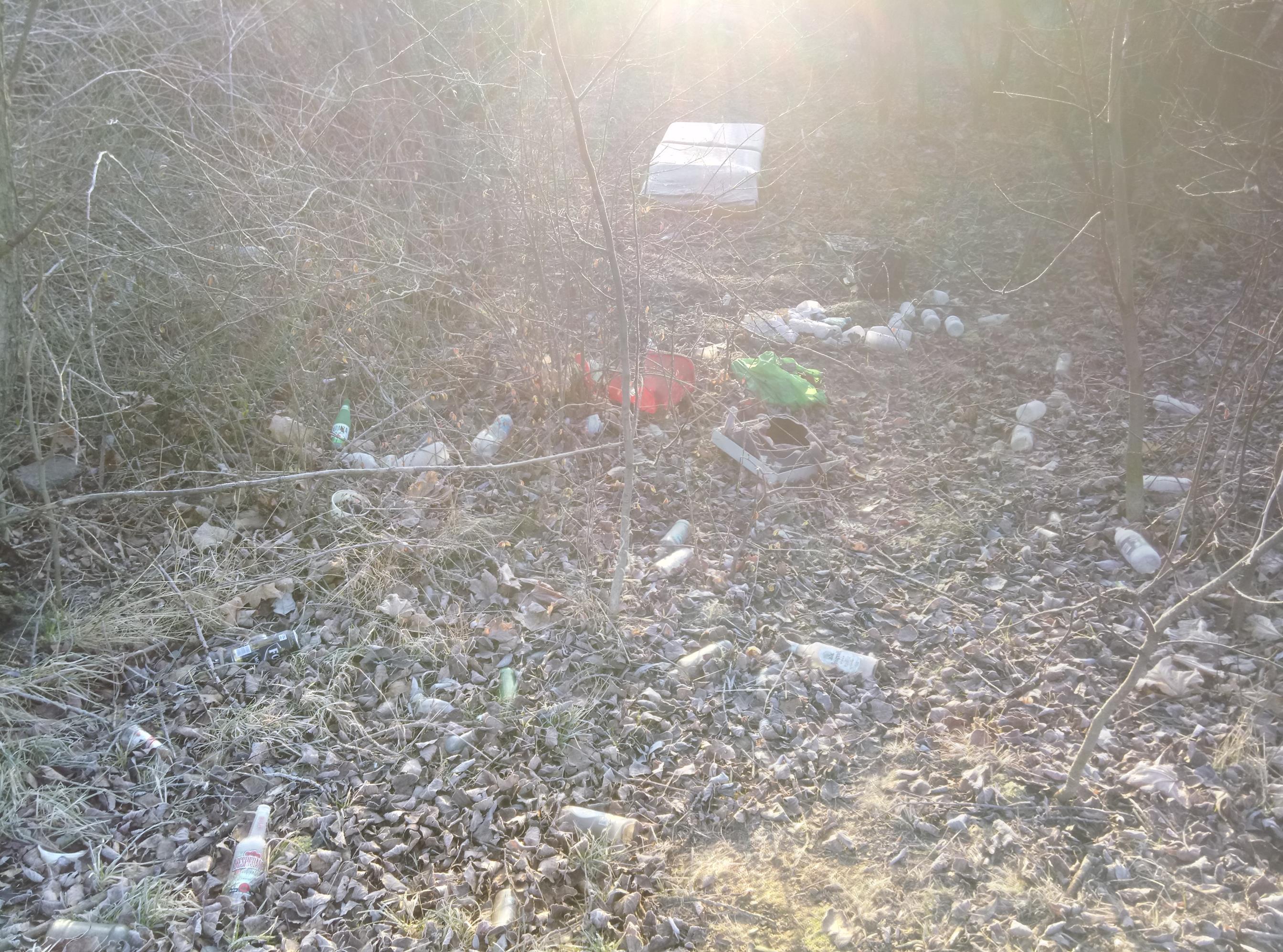 Miasto utkane z... śmieci?